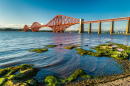 Ponte Firth of Forth, Escócia